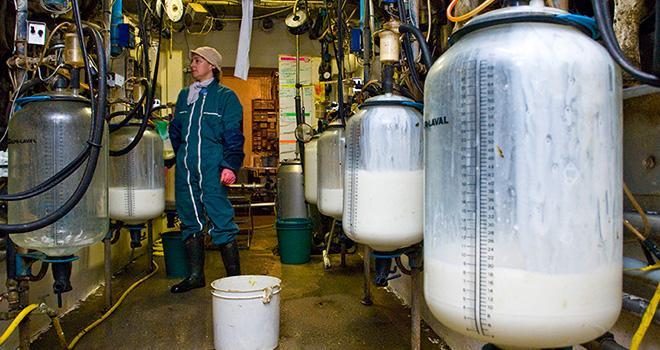 La production laitière a nettement ralenti dans la plupart des bassins laitiers.