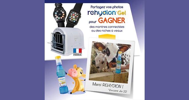 Rehydion, le seul réhydratant pour veau spécialement formulé pour le lait, vous invite à son grand jeu Facebook.